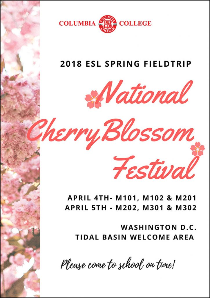 Pink and White Cherry Blossoms Theatre Poster (4)a